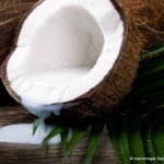 Coconut fats are healthy