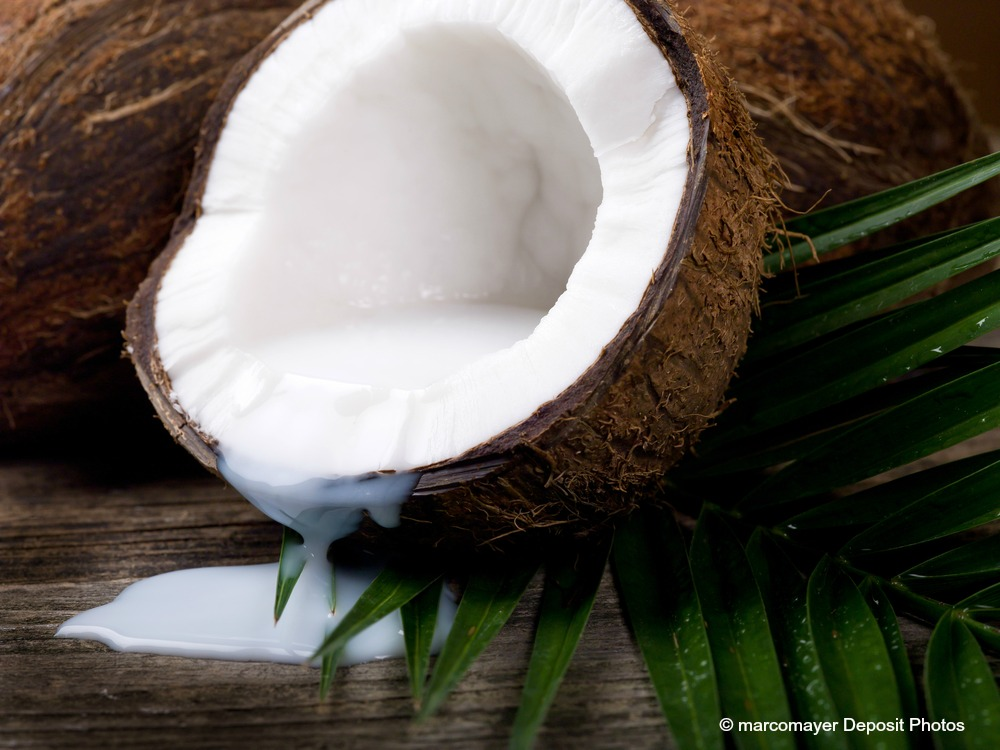 Coconut oil now understood to not only help with teeth because of it antimicrobial nature, it actually helps leach out bacteria from the blood and saliva too