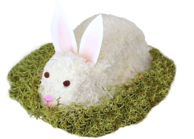 Gluten Free Easter Bunny Cake with Shredded Coconut