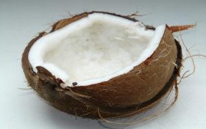 Coconut oil raises metabolism